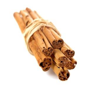 cinnamonum-org300x300