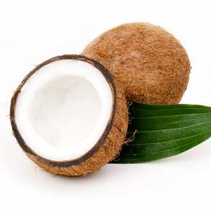 coconut-medium300x300